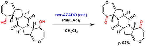 N_oxylradical_9-1024x325