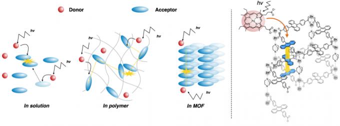 图5 TTA在溶液、聚合物和MOF中的机理
