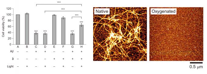 图4 左:细胞活性实验;右:AFM实验