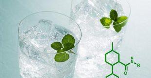 让人体会凉感的物质——薄荷酰胺系列凉味剂
