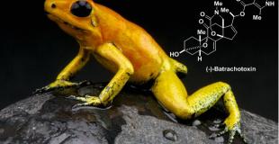 Science:箭毒蛙毒素(-)-Batrachotoxin的合成