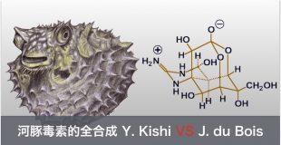 河豚毒素(Tetrodotoxin) 的全合成 Y. Kishi VS J. du Bois