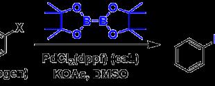 宫浦-石山硼酸化 Miyaura-Ishiyama Borylation