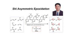 史一安环氧化反应(一)—研究背景