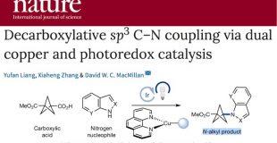 Nature 光和铜共催化的脱羧sp3 C-N键的构建