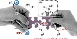 Angew. Chem., Int. Ed.  烯丙基C(Sp3)-H键的直接杂芳基化