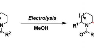 庄野氧化 Shono Oxidation