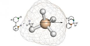 J. Am. Chem. Soc. 硅烷-N-杂环合成的新方法