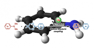 J. Am. Chem. Soc. 芳香胺的Suzuki―Miyaura偶联