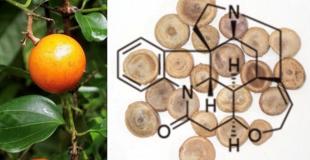 生活中的分子——番木鳖碱(Strychnine)