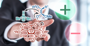 J. Am. Chem. Soc. Counter-Anion导向的手性氨基甲基化