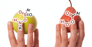 J. Am. Chem. Soc. 立体定向氮丙啶化:Prilezhaev环氧化的氮丙啶版
