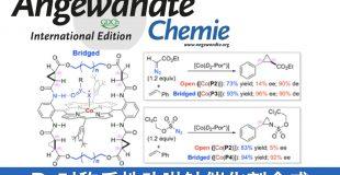 D2对称手性卟啉钴催化剂合成
