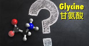 生物化学读书笔记系列(六)甘氨酸