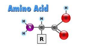 氨基酸,你这么记过吗?