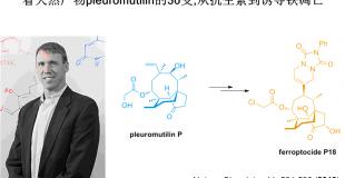 看天然产物pleuromutilin的36变,从抗生素到诱导铁凋亡