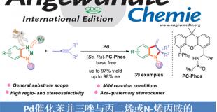 Pd催化苯并三唑与丙二烯或N-烯丙胺的不对称脱氮环化反应