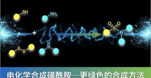 JACS:电化学合成磺酰胺,更绿色的合成方法