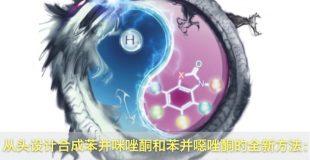 从头设计合成苯并咪唑酮和苯并噁唑酮的全新方法:电化学脱氢环合串联反应