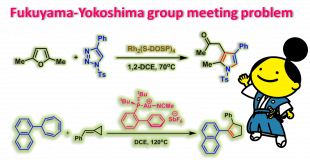 Fukuyama-Yokoshima group meeting problem 1