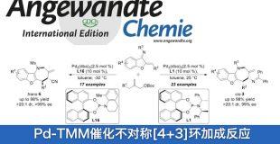 华东理工大学药学院邓卫平教授课题组Angew: Pd-TMM催化不对称[4+3]环加成反应合成苯并呋喃[3,2-b]氮杂䓬骨架