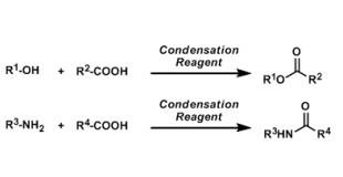 缩合剂(Condensation Reagent)