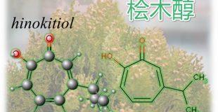 桧木醇 (Hinokitiol)