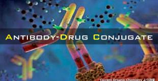 ADC抗体偶联药基础篇②: 创药化学视角解析ADC机理及其优缺点
